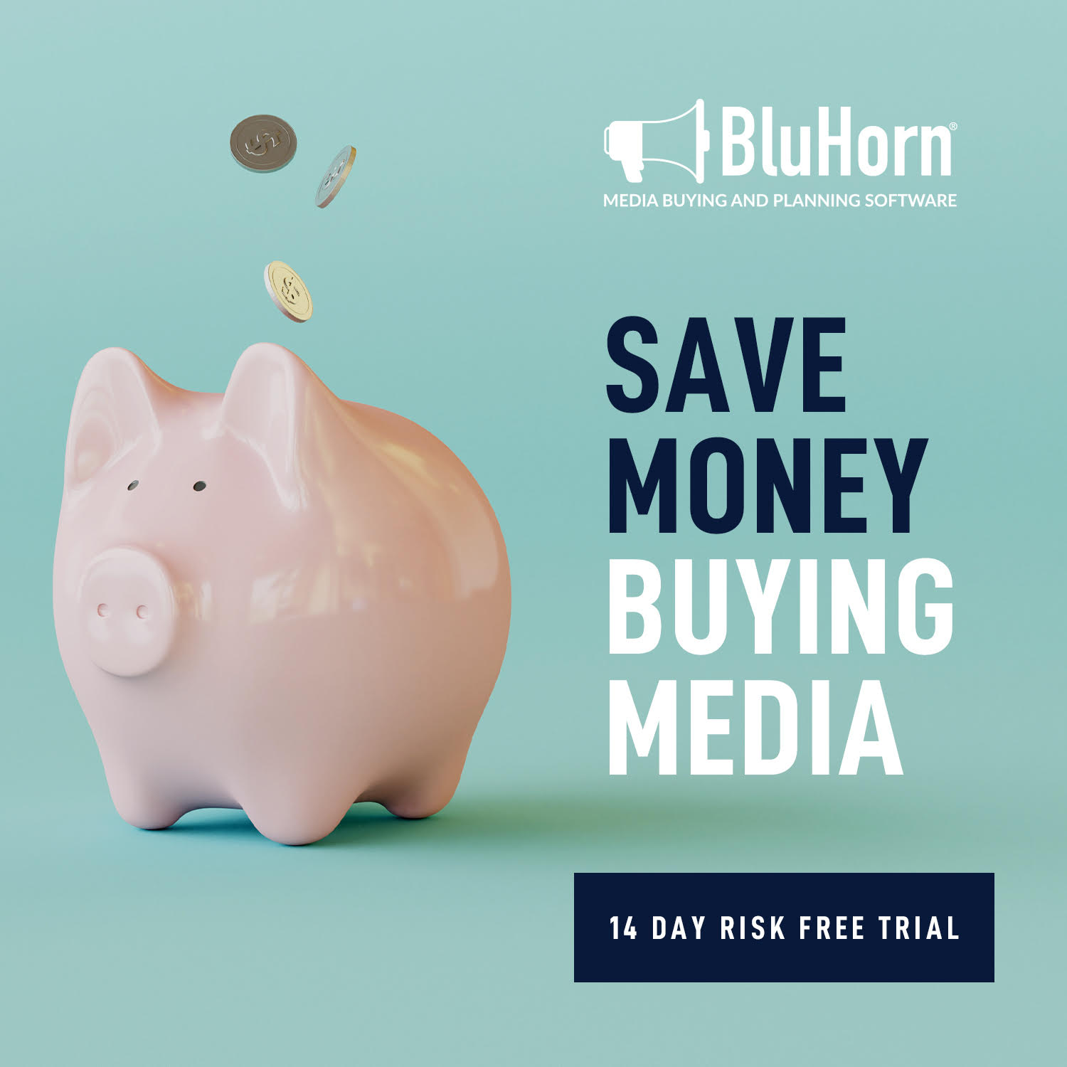 BluHorn Media Planning Software